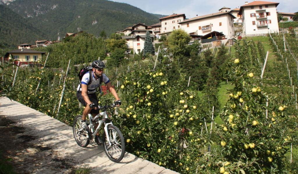 6. Etappe (ost), Val di Non - Andalo - Ponte Arche<br>63 km, 1700 Höhenmeter