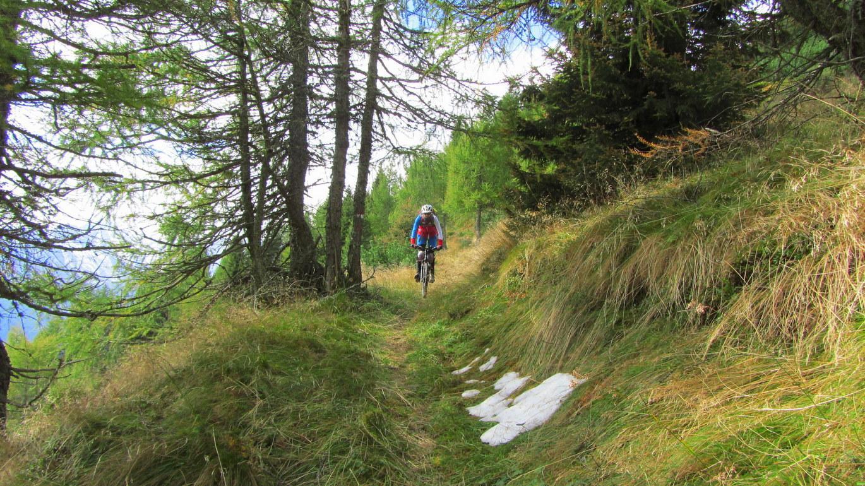 Auf dem Einser Richtung Gossensass: Fast 1000 Höhenmeter feinster Singletrail winken als Abschluß des Grenzkamms
